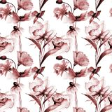 Seamless pattern with Decorative summer flowers Stock Image