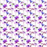 Seamless pattern with Decorative summer flowers. Watercolor illustration Royalty Free Stock Image