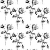 Seamless pattern with decorative wild flowers Stock Images