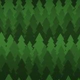 Seamless pattern with dense dark fir trees Royalty Free Stock Image