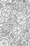 Seamless pattern with detailed hand drawn lemons. Background for coloring book pages. stock photography