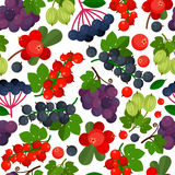 Seamless pattern with different berries stock images