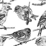Seamless pattern with different birds drawn by hand Stock Photo