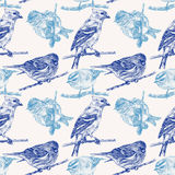 Seamless pattern with different birds drawn by hand Royalty Free Stock Images