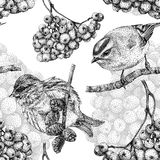 Seamless pattern with different birds and plants drawn by hand Stock Photo