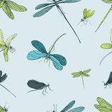Seamless pattern with different dragonfly. Hand drawn background with flying adder. Vector illustration. Royalty Free Stock Image