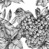 Seamless pattern with different flowers, birds and plants drawn. Graphic drawing, pointillism technique. Can be used for pattern fills, wallpapers, web page royalty free illustration