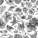 Seamless pattern with different flowers, birds and plants Stock Photography