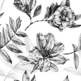 Seamless pattern with different flowers and plants drawn by hand Stock Images
