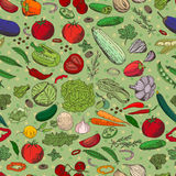 Seamless pattern with different fresh vegetables. Stock Photography