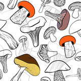 Seamless pattern with different hand drawn mushrooms in black and white with color contrasts. Stock Images