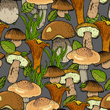 Seamless pattern with different mushrooms Stock Image