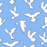Seamless pattern of different pigeons Stock Photos