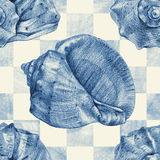 Seamless pattern with different seashells drawn by hand Royalty Free Stock Photos