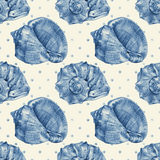 Seamless pattern with different seashells drawn by hand Royalty Free Stock Photography