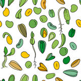 Seamless pattern with different seeds.  Endless texture Royalty Free Stock Photo
