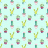 Seamless pattern with different green cacti in multi-colored pots stock illustration