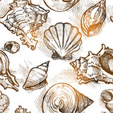 Seamless pattern from of different shapes shell sketches. Vector stock illustration