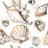Seamless pattern from of different shapes shell  sketches 1. Vector Royalty Free Stock Photography