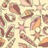 Seamless pattern with different shells Royalty Free Stock Photo