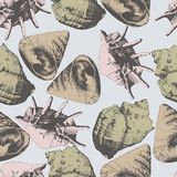 Seamless pattern with different shells Stock Images