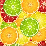Seamless pattern with different slice citruses Royalty Free Stock Photos
