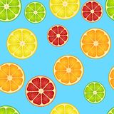Seamless pattern with different slice citruses Royalty Free Stock Photo