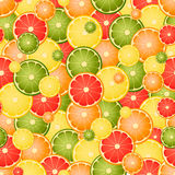 Seamless pattern with different slice citruses Royalty Free Stock Photography