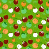 Seamless pattern with different tomatoes Stock Photos
