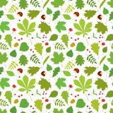 Seamless pattern of different tree leaves, Rowan berries, acorns, nuts on white background. Royalty Free Stock Photos