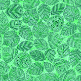 Seamless pattern with different tree leaves Royalty Free Stock Image