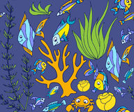 Seamless pattern with different tropical fish Royalty Free Stock Images