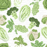 Seamless pattern with different varieties of cabbage Stock Image