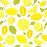Seamless pattern of different vector lemons Stock Photo