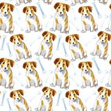 Seamless pattern of a dog, paw and bone.Jack Russell Terrier. Stock Photos