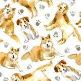 Seamless pattern of a dog and paw.Labrador,Jack Russell Terrier and husky. Domestic pet.Watercolor hand drawn illustration.White background Stock Photography