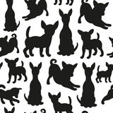 Seamless pattern with dog silhouettes. Stock Photography