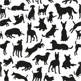 Seamless pattern with dog silhouettes. Stock Photo