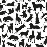 Seamless pattern with dog silhouettes. Royalty Free Stock Image