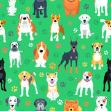 Seamless pattern with dogs flat design Stock Images