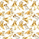Seamless pattern of a dogs.Labrador,Jack Russell Terrier and husky. Domestic pet.Watercolor hand drawn illustration.White background Stock Photo