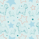 Seamless pattern with dogs and stars Royalty Free Stock Photos