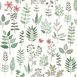 Seamless pattern with doodle herbs Stock Photos