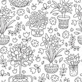 Seamless pattern doodle plants in pots, floral background. Royalty Free Stock Photo