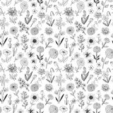 Seamless pattern with doodle sketch flowers. Can be used for wallpaper, pattern fills, textile, web page background. Surface textures Royalty Free Stock Photography