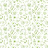 Seamless pattern with doodle sketch flowers. Can be used for wallpaper, pattern fills, textile, web page background. Surface textures Royalty Free Stock Photos