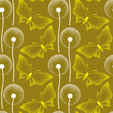 Seamless pattern with dotted dandelion and butterflies Stock Photos