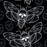 Seamless pattern with dotted Death's head hawk moth or Acherontia atropos in white and skulls Royalty Free Stock Photos