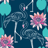 Seamless pattern with dotted flamingo and pink water lilies Royalty Free Stock Image