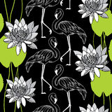 Seamless pattern with dotted flamingo in white and water lilies Royalty Free Stock Image